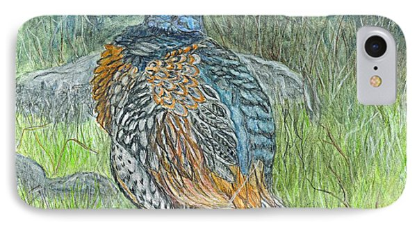 Pheasant Common Male IPhone Case by Carol Wisniewski