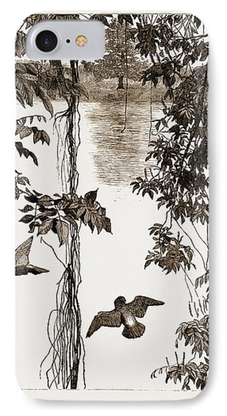 Philodendron Roots And Creeper On The River Quanza IPhone Case by Litz Collection