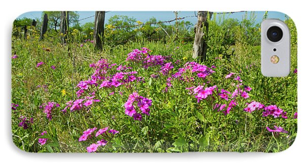 Phlox (phlox Sp IPhone Case
