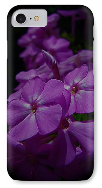 Phlox IPhone Case by Tim Good