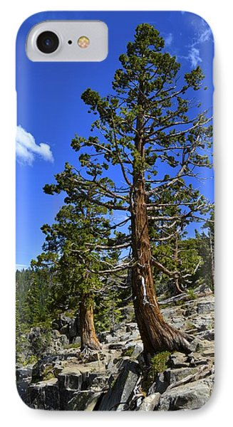 Trees Near Emerald Bay Lake Tahoe IPhone Case by Alex King