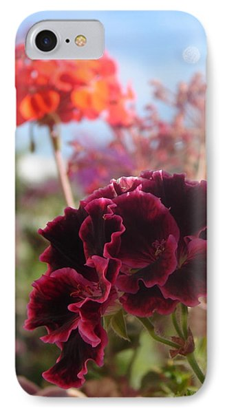 IPhone Case featuring the photograph Pick Me by Lew Davis