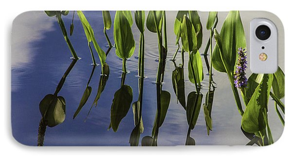 Pickerel Weed Vignetted In White Phone Case by Karen Stephenson