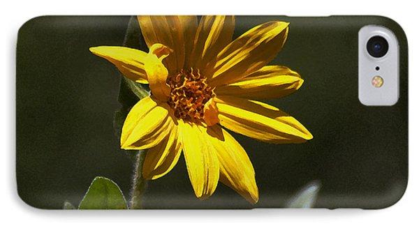 Pickin' Wildflowers  Phone Case by Juls Adams