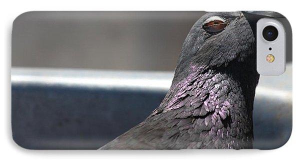 Pigeon In Ecstasy  IPhone 7 Case