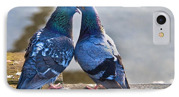 Pigeon Kissing IPhone Case by Peter Dang