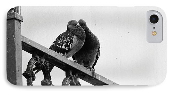 IPhone Case featuring the photograph Pigeons by Meagan  Visser