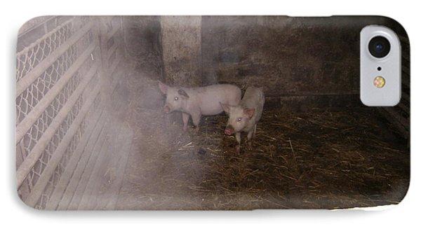 Piggies IPhone Case