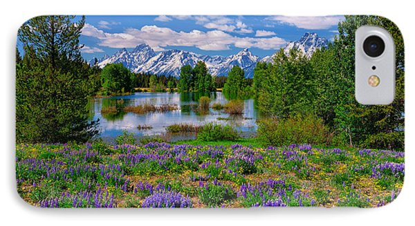 Pilgrim Creek Wildflowers IPhone Case by Greg Norrell