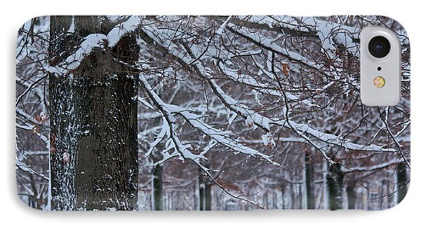 IPhone Case featuring the photograph Pin Oak Snow by Ann Murphy