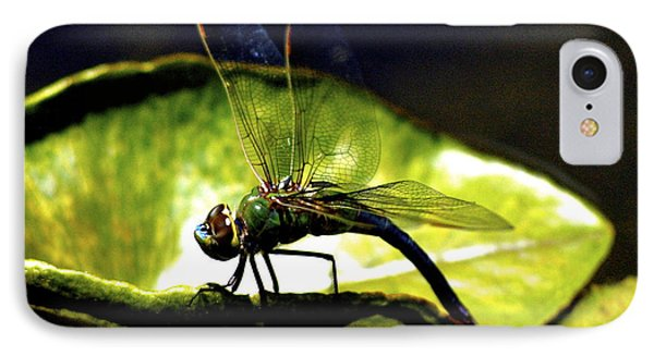 IPhone Case featuring the photograph Pinao The Hawaiian Dragonfly by Lehua Pekelo-Stearns