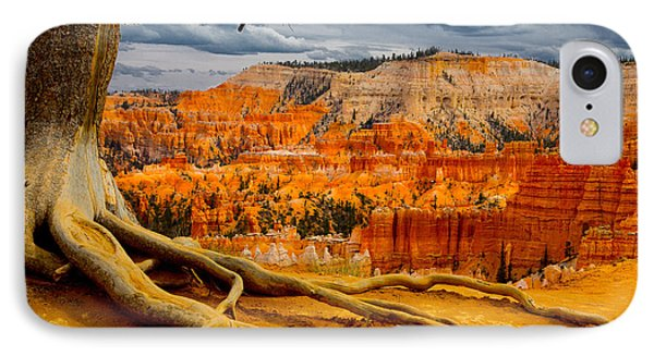 Pine At Bryce IPhone Case