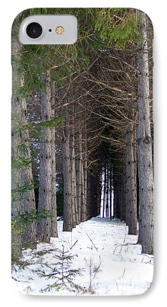 Pine Cathedral IPhone Case by William Tasker