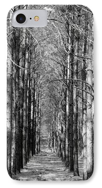Pine Plantation IPhone Case by Betty Northcutt