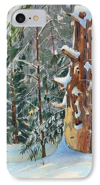 Pine Sentinel IPhone Case by David Gilmore