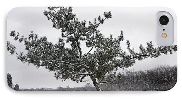 Pine Tree IPhone Case by Melinda Fawver