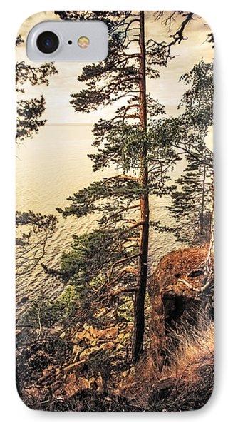 Pine Trees Of Holy Island Phone Case by Jenny Rainbow