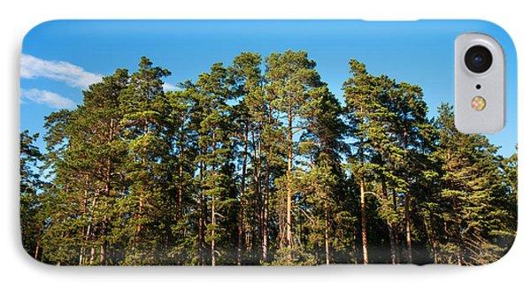 Pine Trees Of Valaam Island Phone Case by Jenny Rainbow