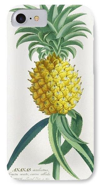 Pineapple Engraved By Johann Jakob Haid Phone Case by German School