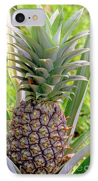 Pineapple Plant IPhone 7 Case