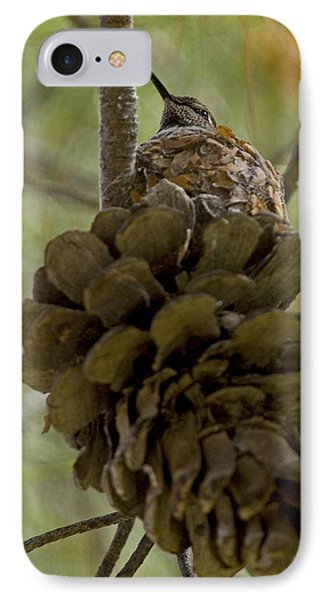 Pinecone Nest IPhone Case by Sue Cullumber