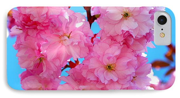 Pink And Blue IPhone Case by Richard Hinger