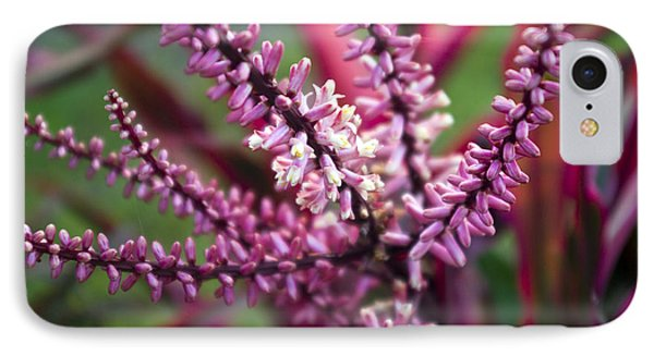 Far North Queensland iPhone 7 Case - Pink And Cream Cluster Bloom by Kerryn Madsen-Pietsch