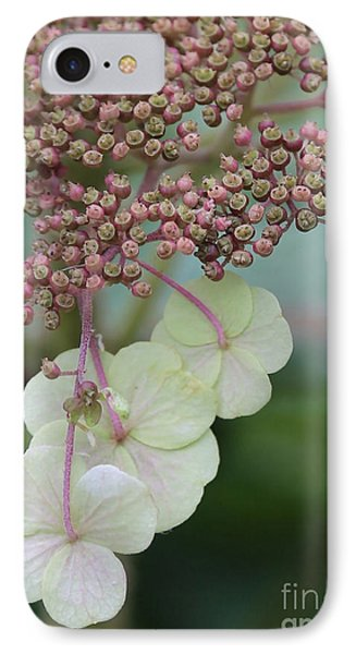 Pink And Green Hydrangea Closeup Phone Case by Carol Groenen