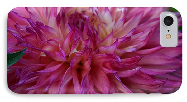 IPhone Case featuring the photograph Pink And White Dahlia  by Denyse Duhaime