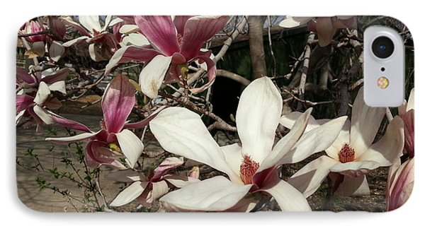 IPhone Case featuring the photograph Pink And White Spring Magnolia by Caryl J Bohn