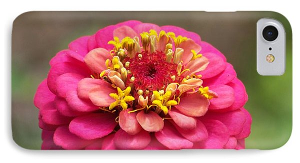 IPhone Case featuring the photograph Pink Floral  by Eunice Miller