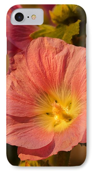 IPhone Case featuring the photograph Pink And Yellow Hollyhock by Sue Smith