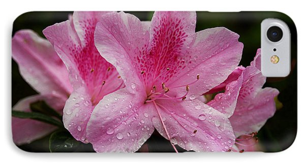 IPhone Case featuring the photograph Pink Azalea by Lorenzo Cassina