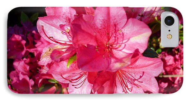 IPhone Case featuring the photograph Pink Azalea by Therese Alcorn