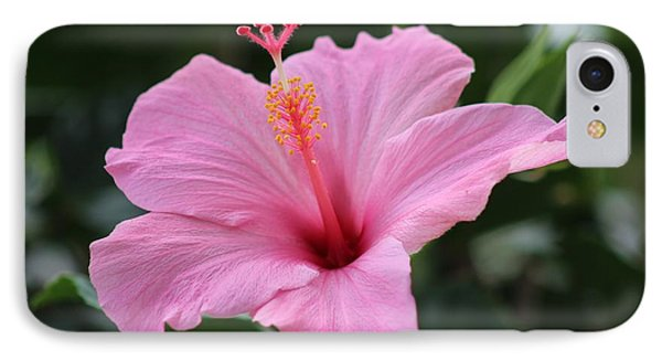 Pink Blossom IPhone Case by Nance Larson