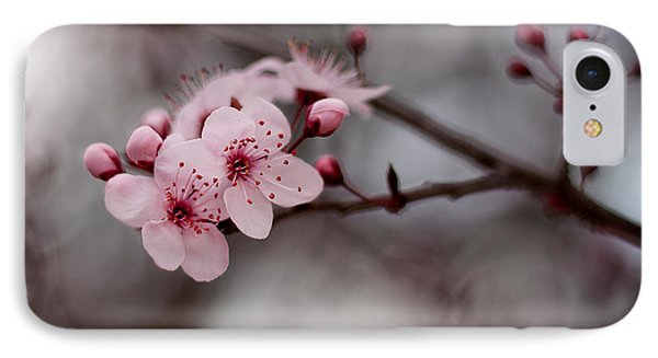 Pink Blossoms Phone Case by Michelle Wrighton