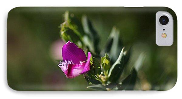 Pink Blush - Sweet Pea Bush  Phone Case by Joy Watson