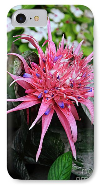 Pink Bromeliad Phone Case by Andee Design