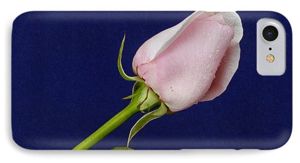 Pink Bud IPhone Case by Michael Gordon