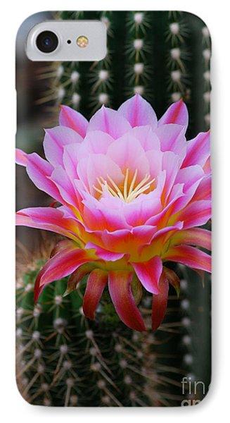 Pink Cactus Flower Phone Case by Nancy Mueller