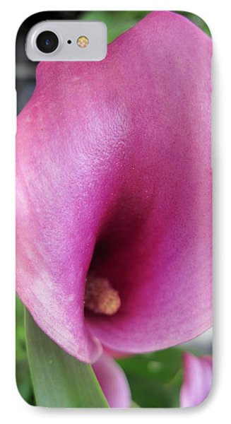 Pink Calla Lily Phone Case by Patricia E Sundik