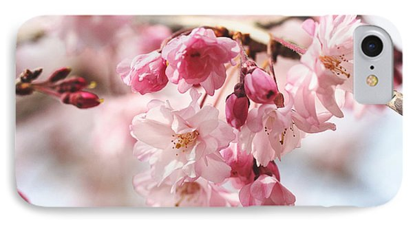 Pink Cherry Blossoms IPhone Case by Trina  Ansel