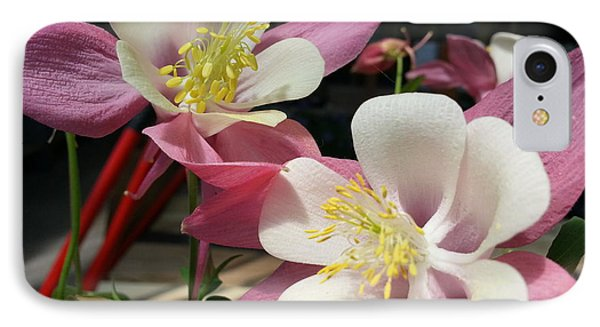 IPhone Case featuring the photograph Pink Columbine by Caryl J Bohn