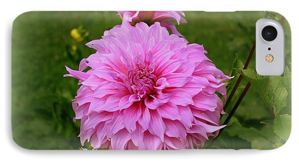 Pink Dahlia Phone Case by Donna Walsh