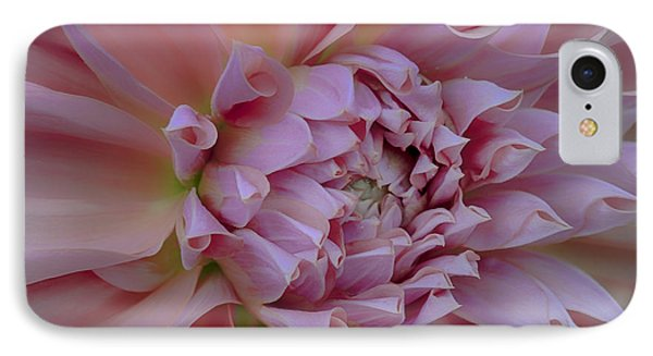 Pink Dahlia IPhone Case by Jacqui Boonstra