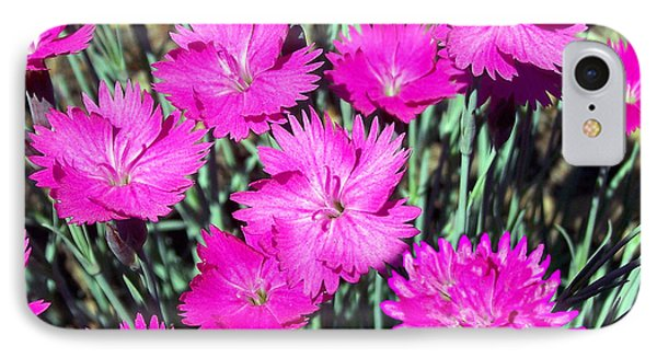 IPhone Case featuring the photograph Pink Daisies by Gena Weiser