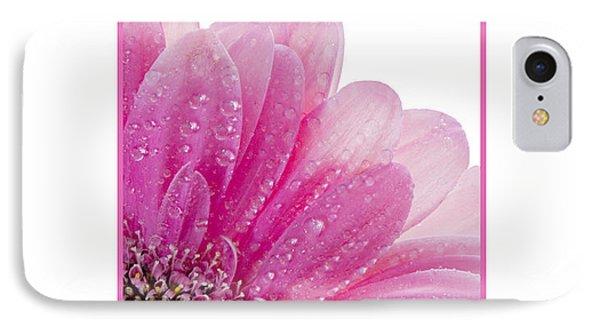 Pink Daisy Petals IPhone Case
