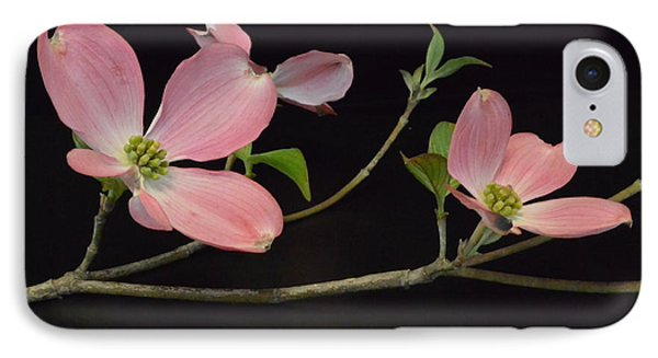 IPhone Case featuring the photograph Pink Dogwood Branch  by Jeannie Rhode