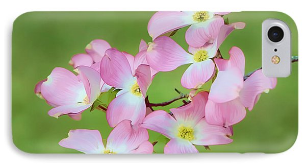 Pink Dogwood Watercolor Phone Case by Dan Holland