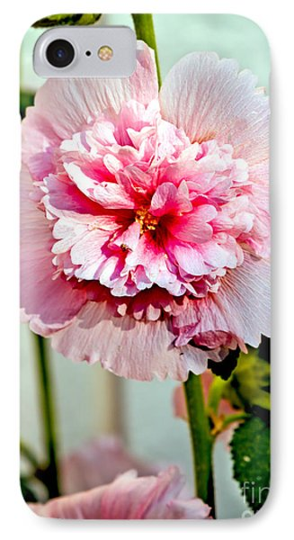 Pink Double Hollyhock Phone Case by Robert Bales